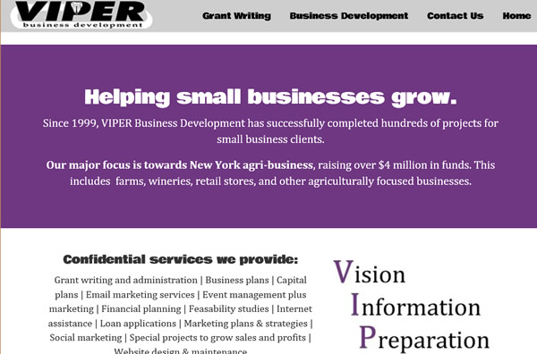 viper business development